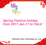 Spring Festival Holiday