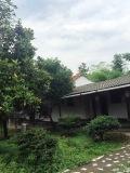 Beautiful Village