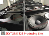 STX 825 producing site