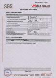 SGS Audit Report 5
