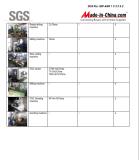 SGS REPORT 5