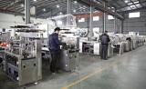 DPP-250 blister packing machine plant