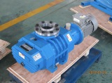 ZJ/ZJP ROOTS VACUUM PUMP