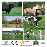 Cheap Galvanized Farm Sheep Fence/Cattle Fence/Field Fence