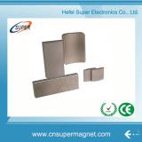 Rare Earth Arc NdFeB Magnet for Motor