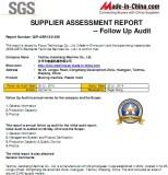 SGS report 10
