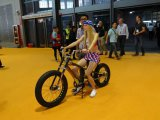Bicycle Show