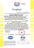 QITELE GB/T28001-2001