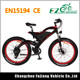 CE EN15194 Approved Lithium Power Electric Bicycle with Throttle