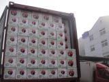 Shipment No.10