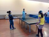 PingPong Game