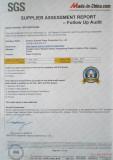 SGS Authentication