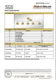 SGS Audit 04
