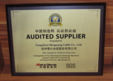 Audit Certificate from SGS