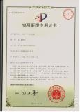 Patent ZL 2009 2 019412