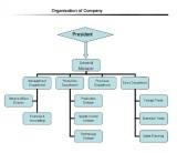 Organization of Company