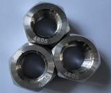 Hex Nut / 2.4605 Nut