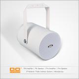 LDQ-003 projector speaker 20w 4inch