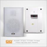 LBG-509 mini wall speaker 20w 4ohms