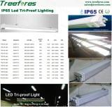 T8 Batten Tube IP65 Tri Proof Lighting