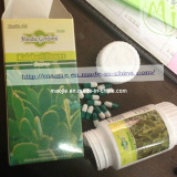 2014 Hot Selling Hoodia Gordonii weight Loss Capsule (MJ-HD 40 CAPS*500mg)