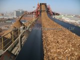 Belt Conveyor Systom for Wood Chips