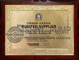 Shiyi Pum SGS Audited Supplier Slurry Pump