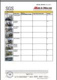SGS REPORT 4