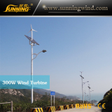 ShenZhen Weather Bureau Wind Solar Street Light Project