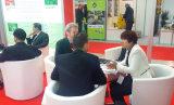 Poland Katowice exhibition customer