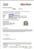 SGS Audit 01