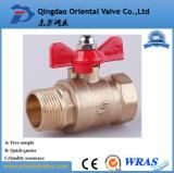 f/m brass ball valve with BSPT/NPT thread