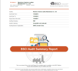 BSCI AUDIT REPORT