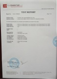 PAHS test report