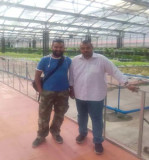 Visiting hydroponic system