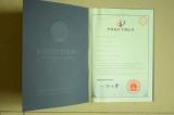 Appearance design patent