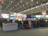 2015 Wuhan EXPO