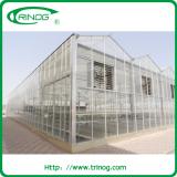 Glass Greenhouse Demo