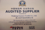 SGS Audit
