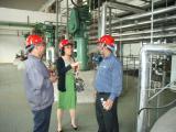 Dyestuff Factory