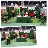 Sunwing Grass Attend USA Fair