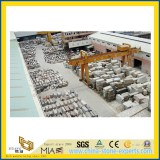 Block Yard from Yeyang Stone Factory _China Stone Factory_01_ FuJian YuanHong Construction Materials
