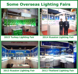 Other Internation Lighting Fair