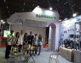 2015 Shanghai CIAPE Exhibition