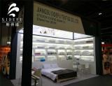 The Exhibition in Dubai in 2017