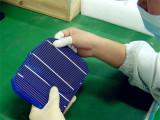 Solar Cells Check