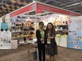 Koohing International Dev.(HK) Ltd - Disney′s Audits 2017-4 HK Fair