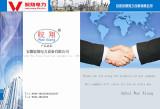 company declaration