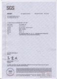 SGS Report 001