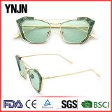 Fashion sunglasses(8317)